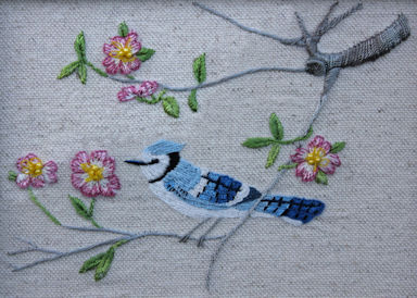 Pink Dogwood and Bluejay pic