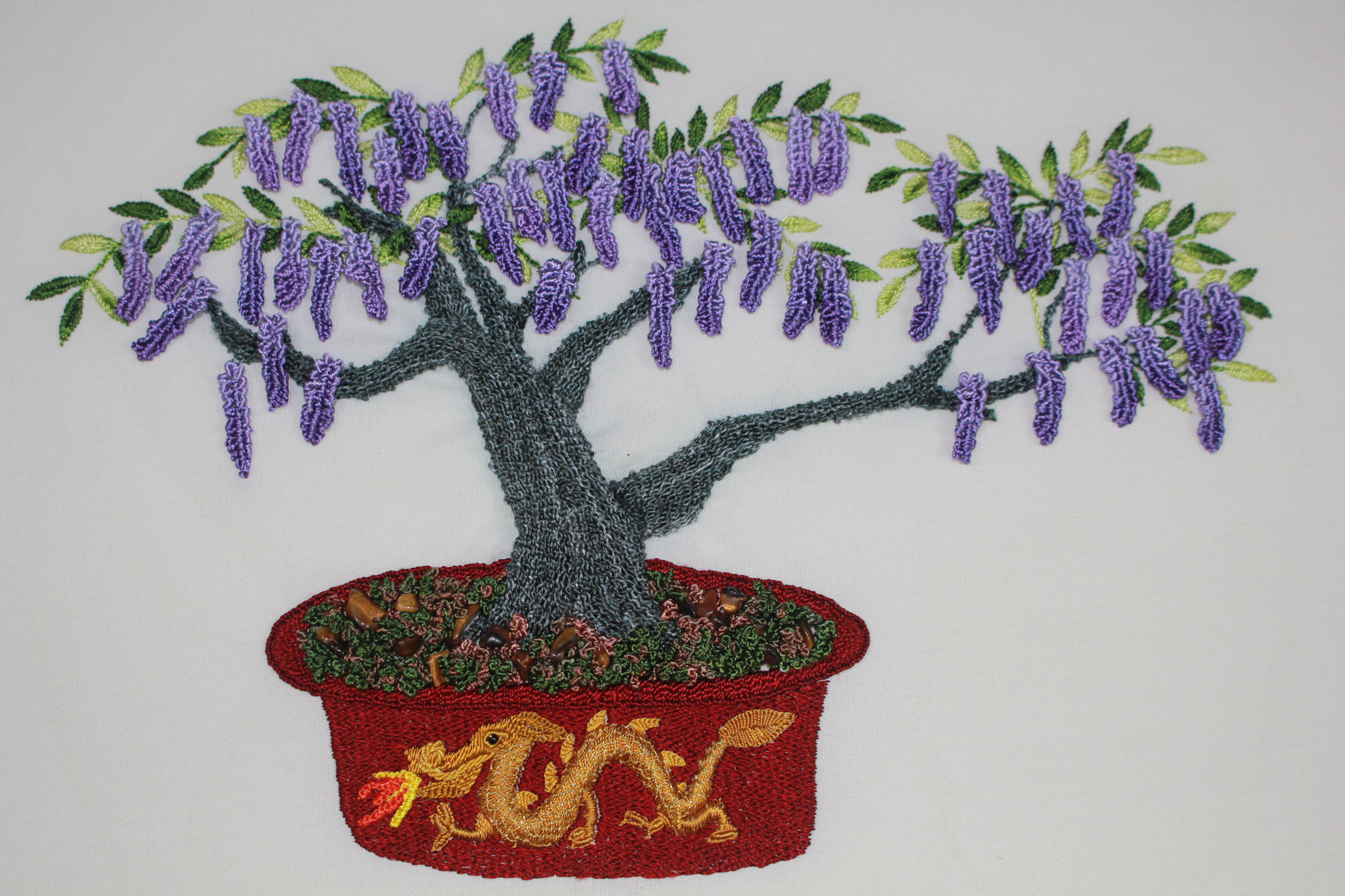 Wisteria Bonsai pic